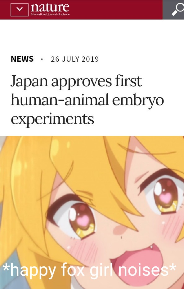 Cat Girls Are Here Boys - japan